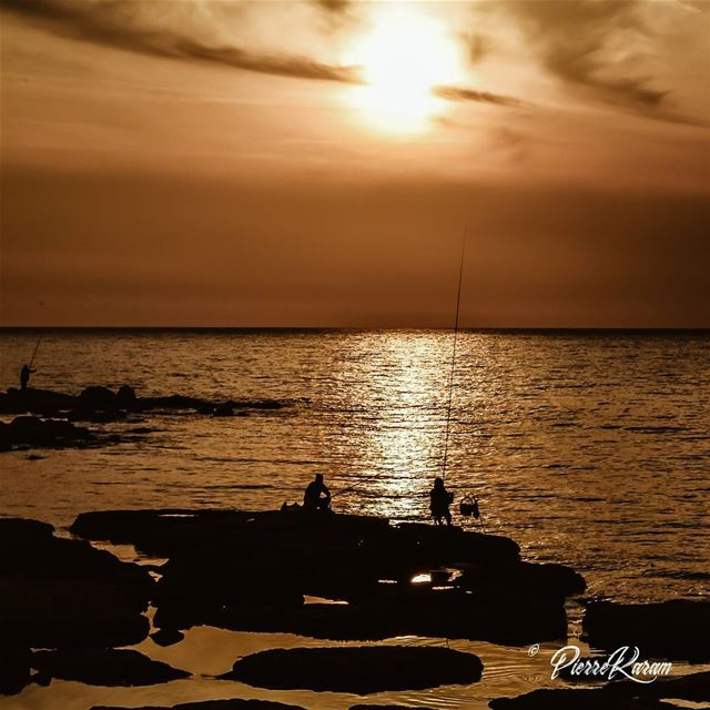 fishermen on  sunset  lebanon  byblos jbeil ... lebanesephotographer ...