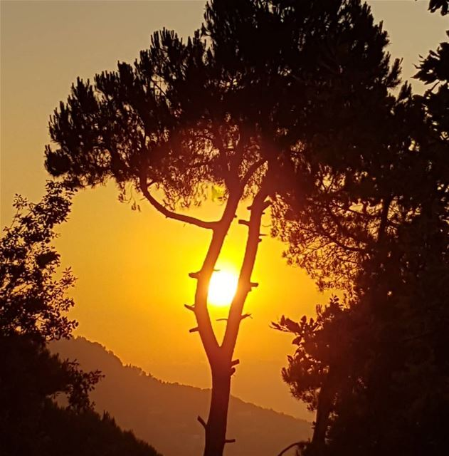 Sunset while walking the dogs in Baskinta ! tourlebanon  tourismlebanon ... (Baskinta, Lebanon)