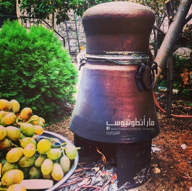 arak made in  fouwara with love  fouwaratraditions  lebanesetraditions ...