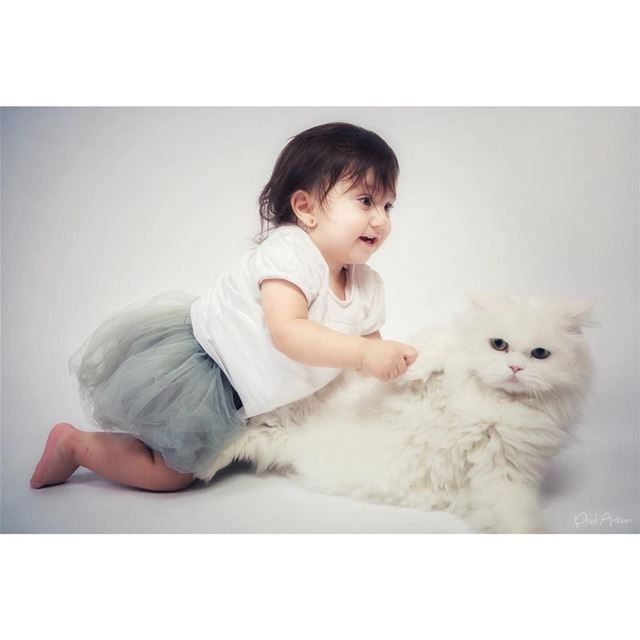 cake  photoshoot  جوري  dream  cat  birthday  playing  smile  oneyearold ...