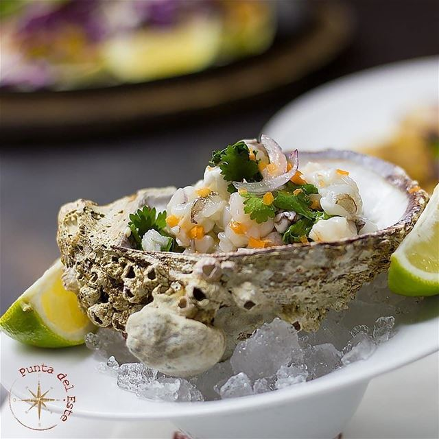 @puntadelestelb -  Showcasing the rich flavors of our Ceviche in the... (Punta Del Este)