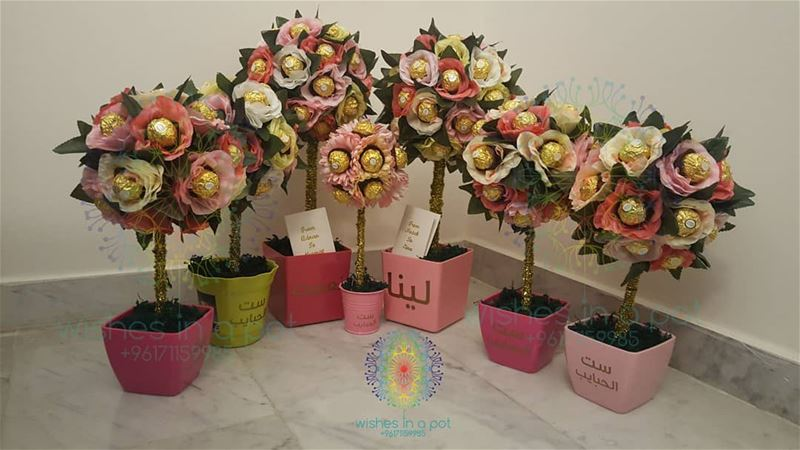 mothersday customized pots for your special mom: starting 20$ 71159985...