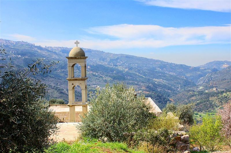 Hosanna In The Highest 🌿  HappyPalmSunday Everyone🕊 ! heikwehike ... (Lebanon)