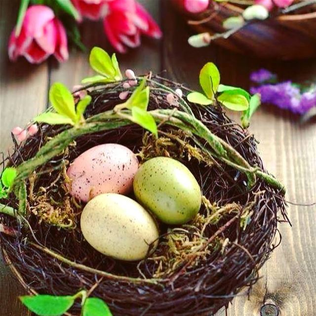 repost via @instarepost20 from @mondanite  Easter  eggs for a  HappyEaster... (Lebanon)