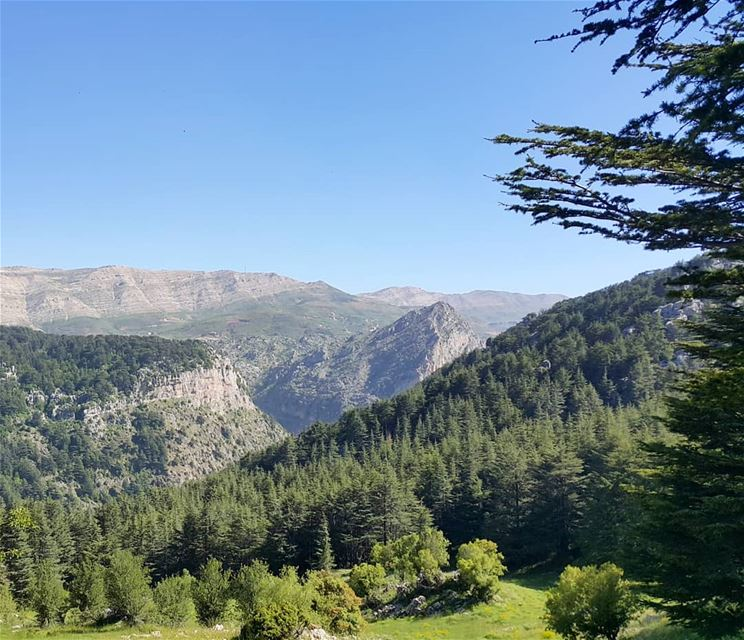 One country One love lebanon  naturelovers  amazing  view  mountains ...
