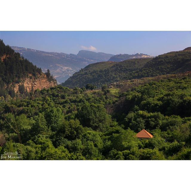 zgharta  koura  nature  oldhouse  trees  hiking  beautifullebanon ...