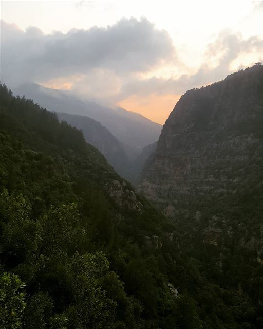 hikingaloneisawesome  hikerslife  hikeday  hikelebanon  hikes  hikers ... (Jabal Moussa Biosphere Reserve)