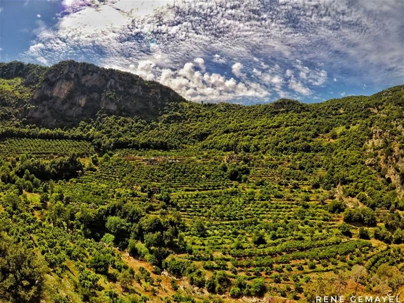 What we see depends mainly on what we look for.... livelovelebanon ... (Zgharta)