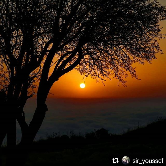 livehasbayalove Repost @sir_youssef ・・・×× Have you ever been in Love? ××... (Lebanon)