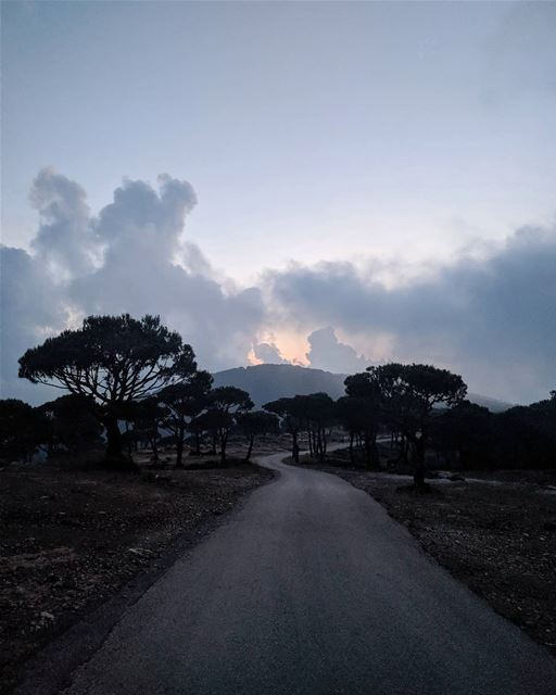 It's your road and yours alone... Others may walk it with you, but no one... (Marj Biskinta, Mont-Liban, Lebanon)