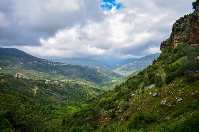 What does nature mean to you? It's life, save it🌱 (Jezzîne, Al Janub, Lebanon)