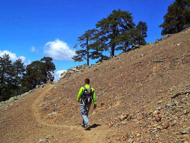 Not all those who wander are lost🚶🚶..... hikingadventures  travel ... (Troodos Mountains)