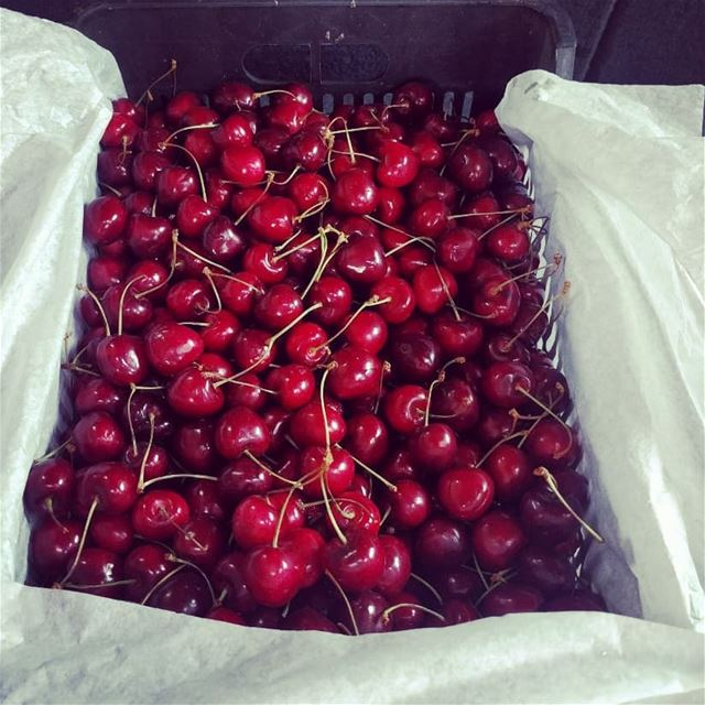 cherries   fruit  fruits  fresh  sweet  yummy  delicious  lebanon ...