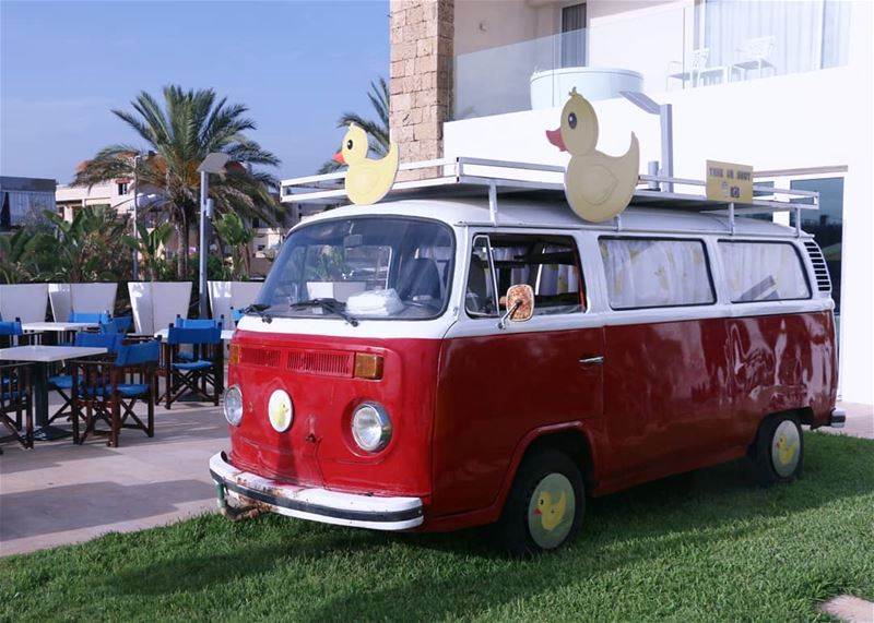 Legendary Camper Serving for the Ducks:) thisislebanon79  viewbug ... (Pangea Beach Resort)