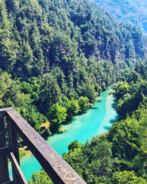 NEW trail that takes you to Chouwen?👀 (read the full info below)..📆📍S (Chouwen)
