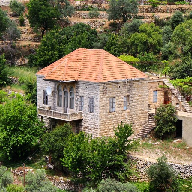Back to the roots! house  villagelife  lifegoals  brickroof  nature  land... (Lebanon)