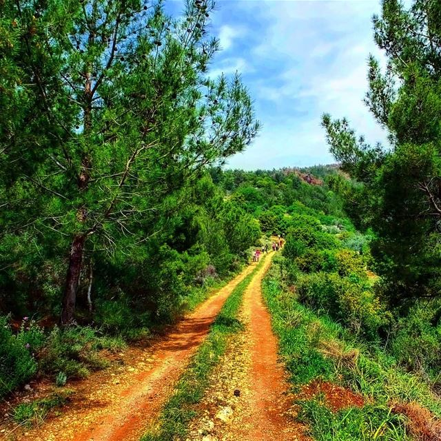 Let the trail be your guide...Explore Hiking in Aito North Lebanon this... (Aïtou, Liban-Nord, Lebanon)