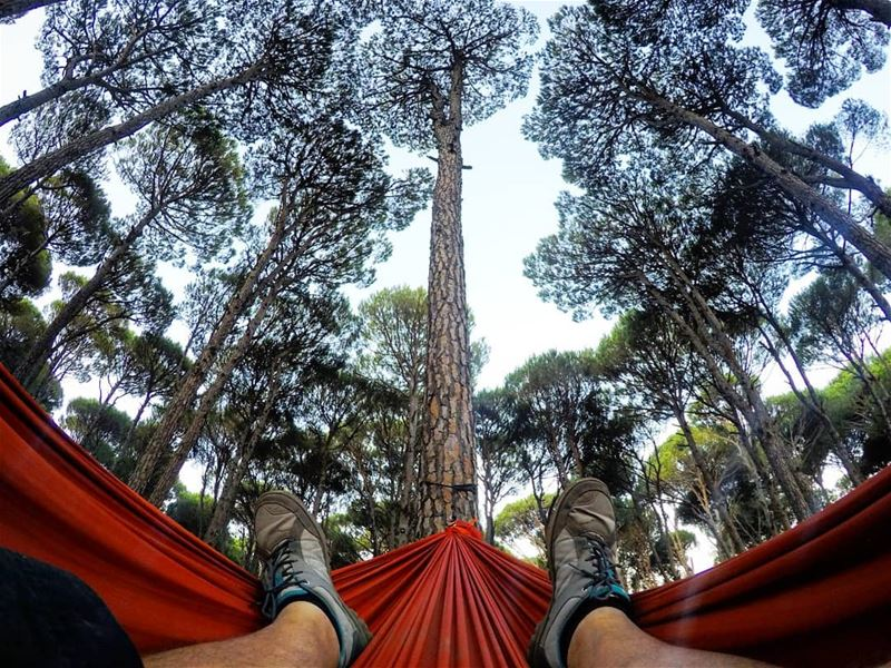 Hammock  Relax  EnjoyNature  MorninVibes  Chill  Chillax  ValleyCamp ... (Aghmid, Mont-Liban, Lebanon)