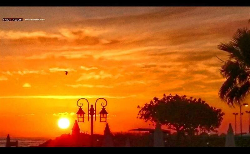 photo  fadiaounphotography  sunset  sun  photography  photoinsta ...